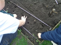 gardening at primary school