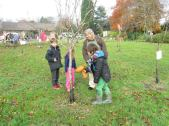 Blessing the apple trees