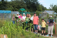 Community allotment