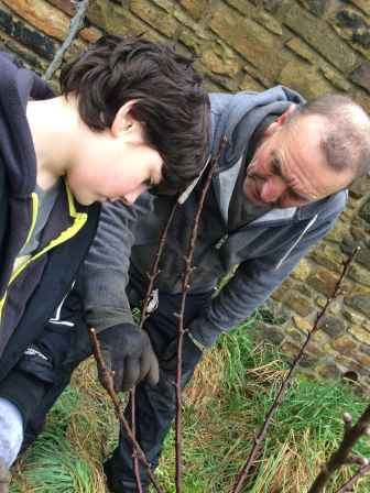 Rob explaining how apple trees grow