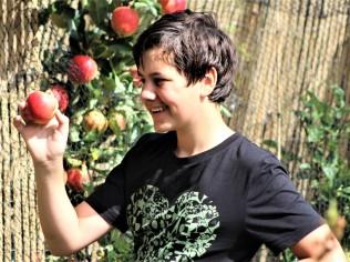 The apple tree 4 years on
